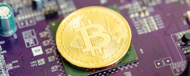 Crypto Crash or Crypto Momentum?