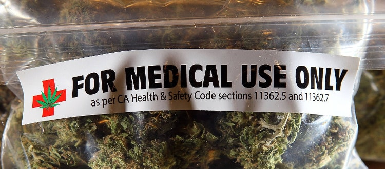 Medical Cannabis Stocks Are Ripe for the Picking