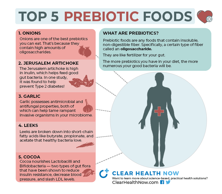 5 Best Prebiotics