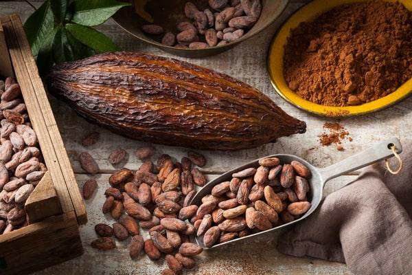 Cocoa Prebiotic
