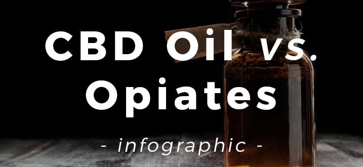 CBD Oil vs. Opiate Painkillers [Infographic]