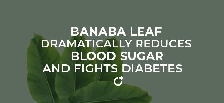 Banaba Leaf Title image