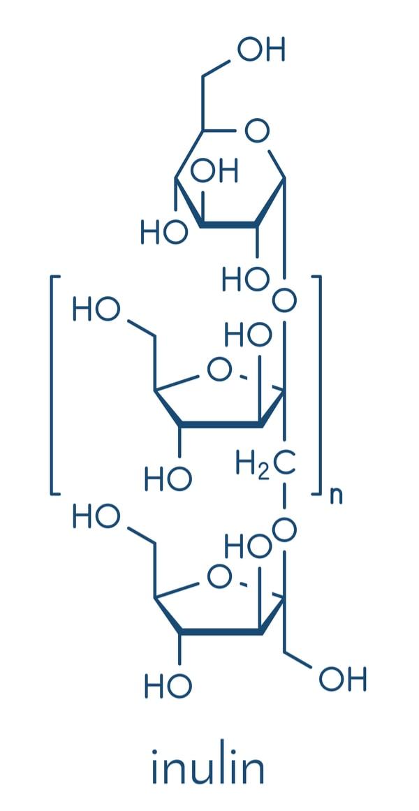 Inulin Molecule