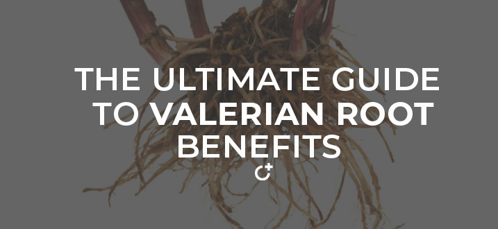 Valerian Root Benefits