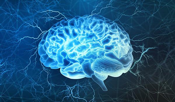 nvj-vitadeep-brain