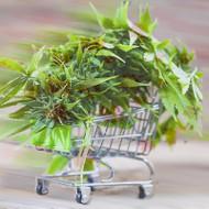 cannabis shopping cart