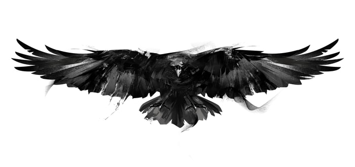 What the Crow Knows About Investing
