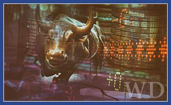 The Bull Market in Hysteria