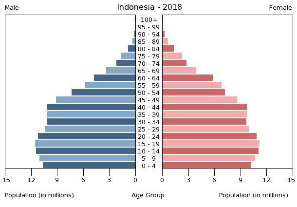 Indonesian Population