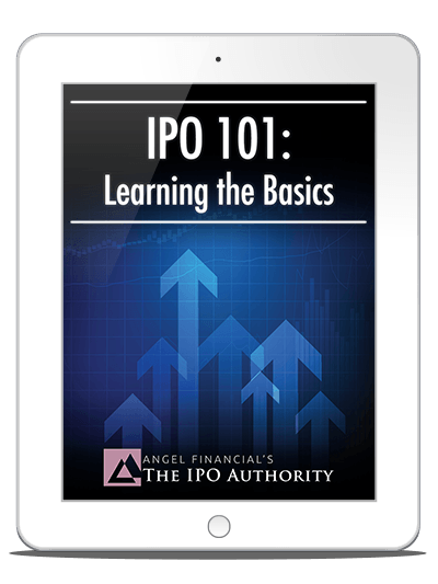 ipo 101 basics report