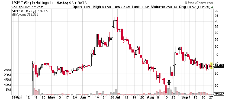 TSP YTD Chart